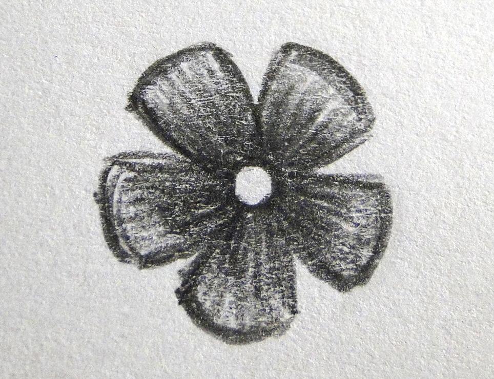 Croquis-Flower