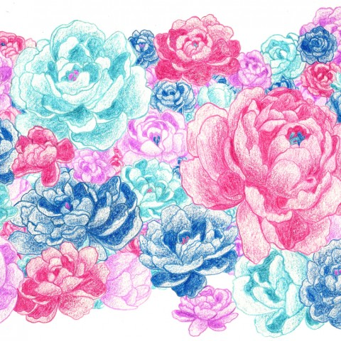 Illustration Pivoines